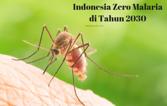 Indonesia Zero Malaria di Tahun 2030