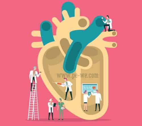 jantung yang sehat mengontrol kadar kolesterol agar tetap normal